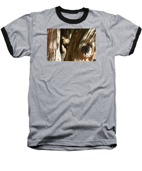 Trees Trunks Baseball T-Shirt