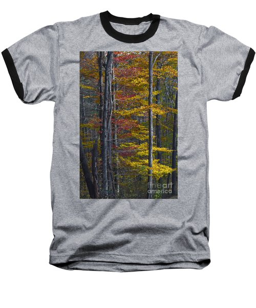 Trees With Autumn Colors 8260c Baseball T-Shirt