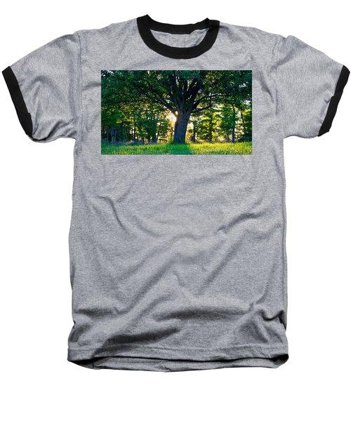 Treescape Baseball T-Shirt