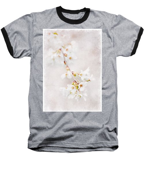 Triadelphia Cherry Blossoms Baseball T-Shirt