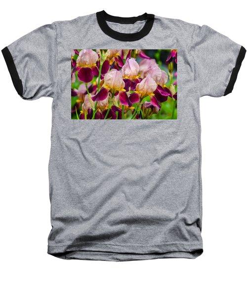 Tricolored Irisses Baseball T-Shirt