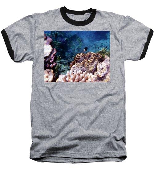 Tridacna Squamosa  Baseball T-Shirt