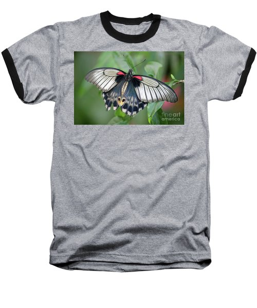 Tropical Butterfly Baseball T-Shirt