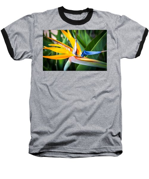 Tropical Closeup Baseball T-Shirt