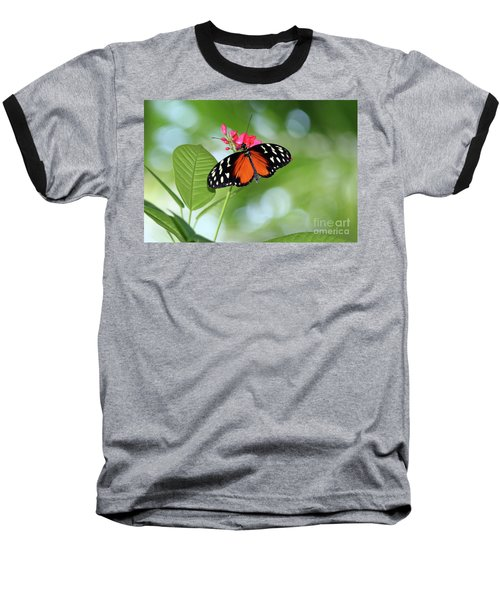 Tropical Hecale Butterfly Baseball T-Shirt