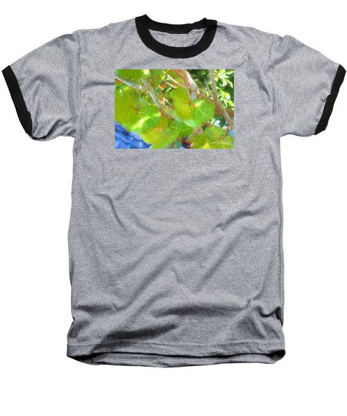 Tropical Leaves Baseball T-Shirt by Linda Olsen