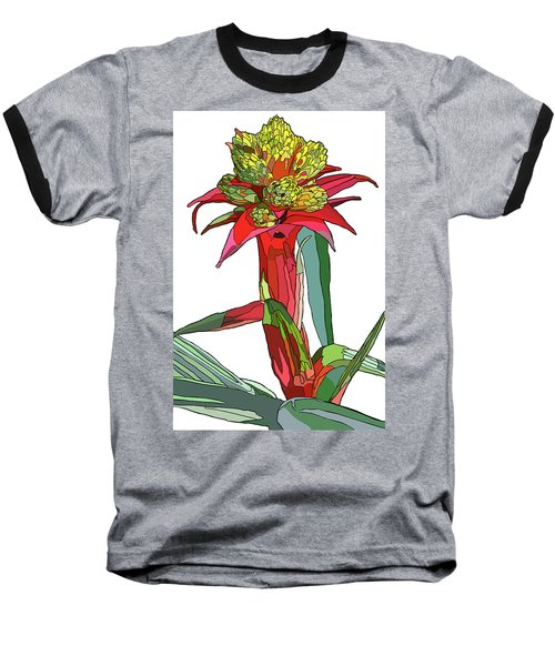Tropical Reds Baseball T-Shirt by Jamie Downs