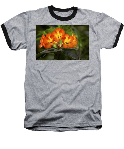 Tropical Rhododendron Baseball T-Shirt