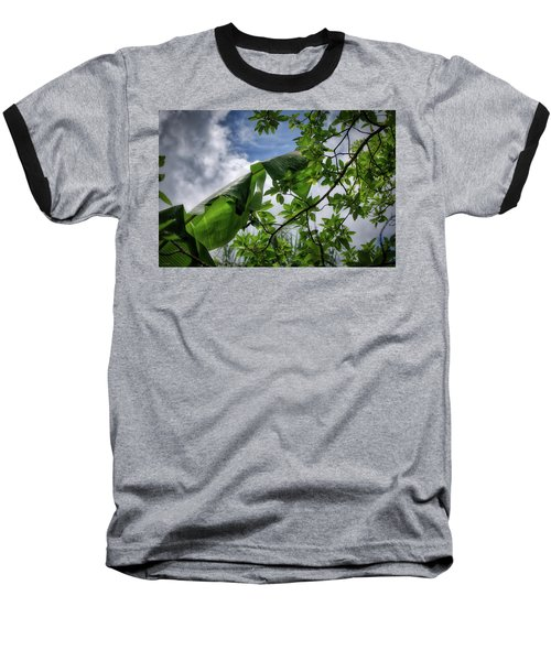 Tropical Sky Baseball T-Shirt