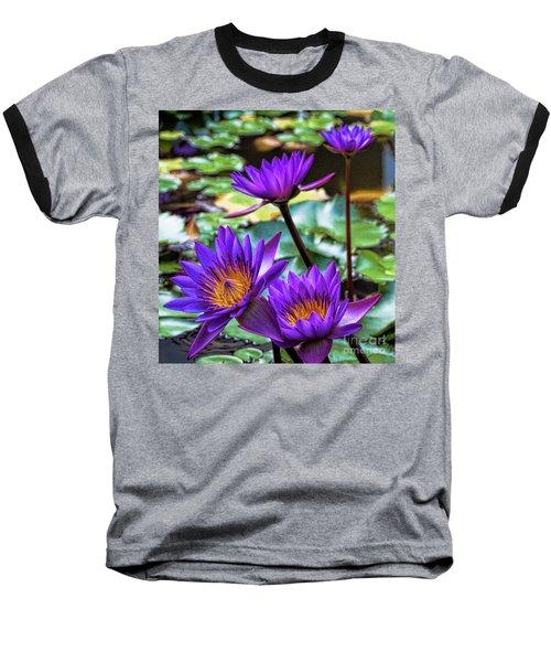 Tropical Water Lilies Baseball T-Shirt by Karen Lewis