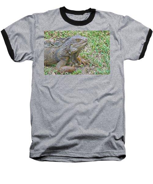 Tropical Wonder Baseball T-Shirt by Judy Kay
