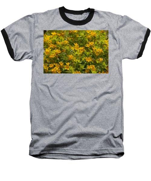 True Gold Baseball T-Shirt by Tim Good