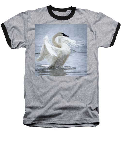 Trumpeter Swan - Misty Display 2 Baseball T-Shirt