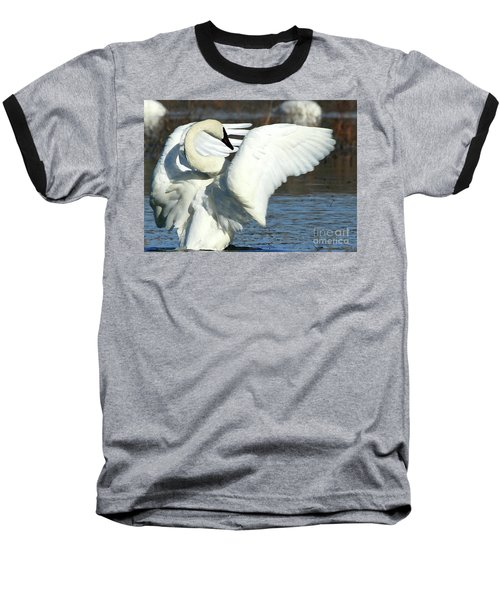 Baseball T-Shirt featuring the photograph Trumpeter Swan by Paula Guttilla