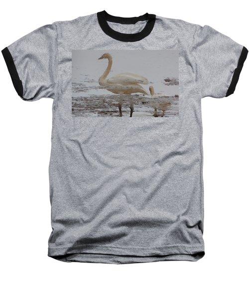 Trumpeter Swan Reflection Baseball T-Shirt by Karen Molenaar Terrell