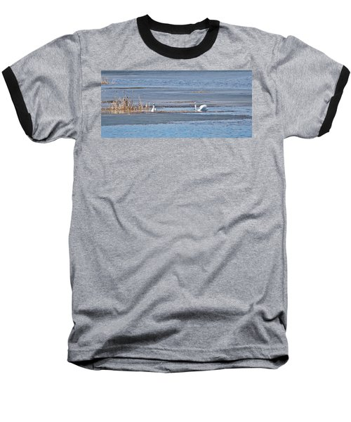 Baseball T-Shirt featuring the photograph Trumpeter Swans 0933 by Michael Peychich