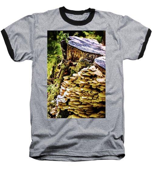 Trunk And Mushrooms Baseball T-Shirt