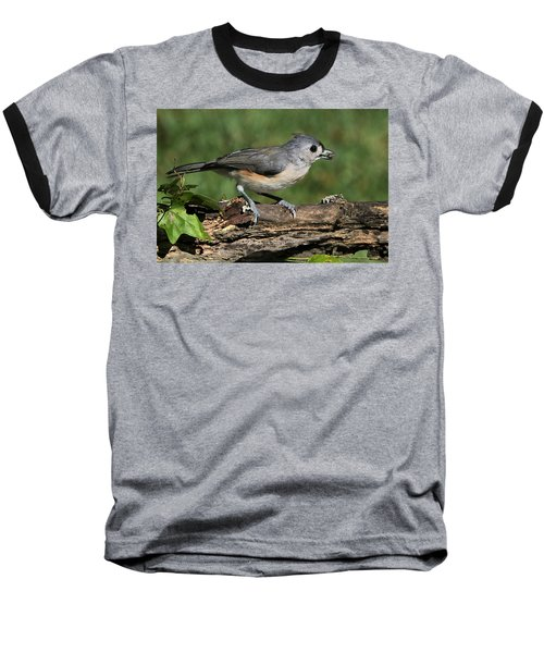 Tufted Titmouse On Tree Branch Baseball T-Shirt