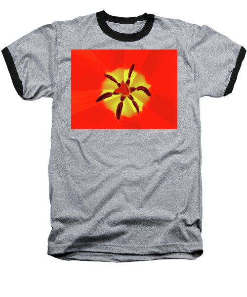 Tulip Baseball T-Shirt