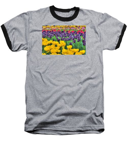 Tulip Colors Baseball T-Shirt by Nadia Sanowar