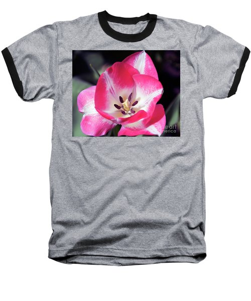 Baseball T-Shirt featuring the photograph Tulip by Elvira Ladocki