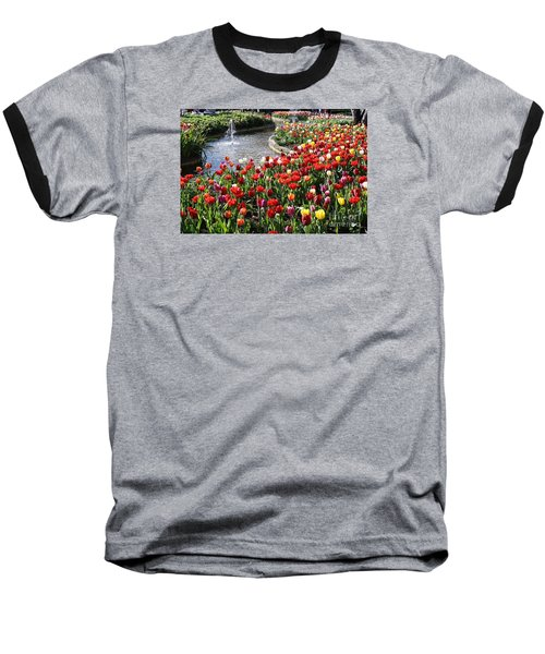 Tulip Festival Baseball T-Shirt by Bev Conover
