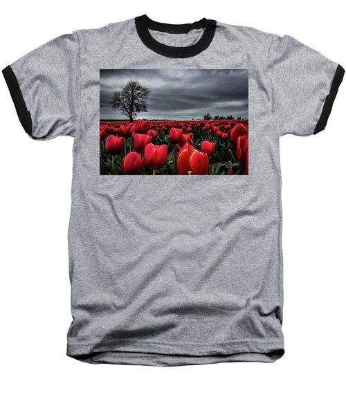 Tulip Fields Baseball T-Shirt