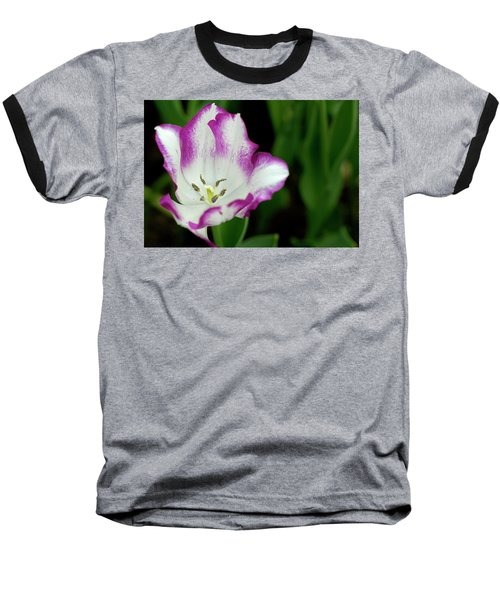 Tulip Flower Baseball T-Shirt