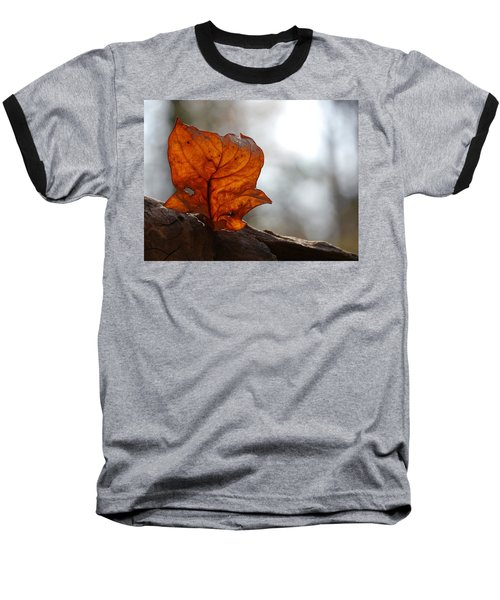 Tulip Leaf  Baseball T-Shirt by Jane Ford