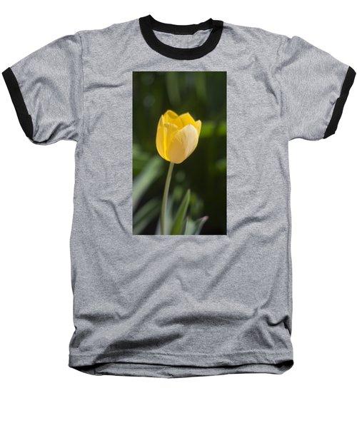 Tulip Portrait Baseball T-Shirt by Morris  McClung