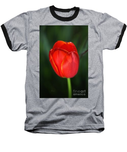 Tulip Red With A Hint Of Yellow Baseball T-Shirt