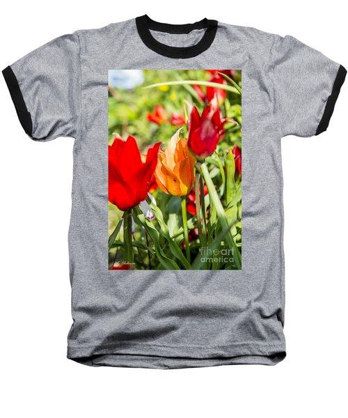Tulip - The Orange One 02 Baseball T-Shirt by Arik Baltinester