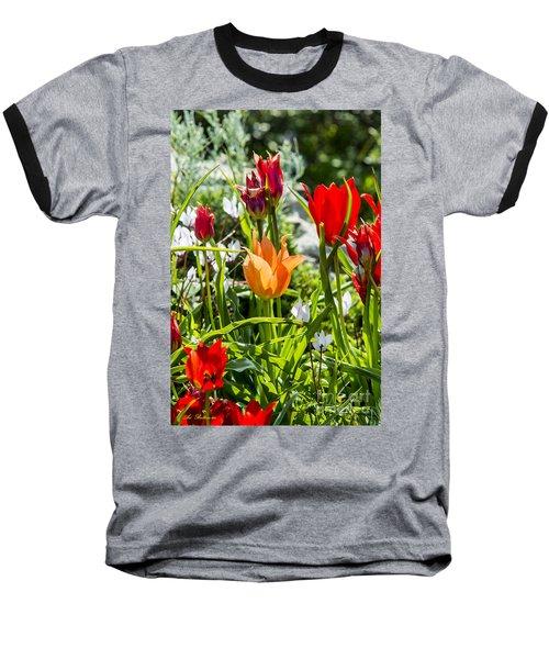 Tulip - The Orange One Baseball T-Shirt by Arik Baltinester