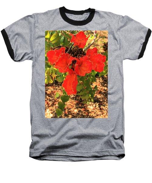 Tulip Tree Flowers Baseball T-Shirt