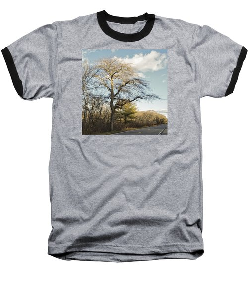 Tupelo Tree Baseball T-Shirt