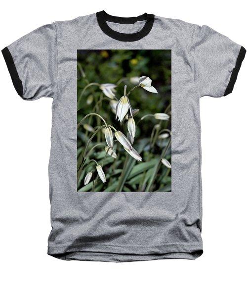 Tulipa Turkestanica Baseball T-Shirt