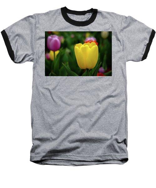 Tulips At Campus Baseball T-Shirt