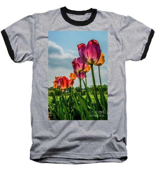 Tulips In The Spring Baseball T-Shirt
