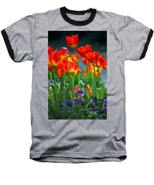 Tulips Baseball T-Shirt by Robert Meanor