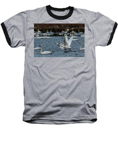 Tundra Swan And Liftoff Head Start Baseball T-Shirt