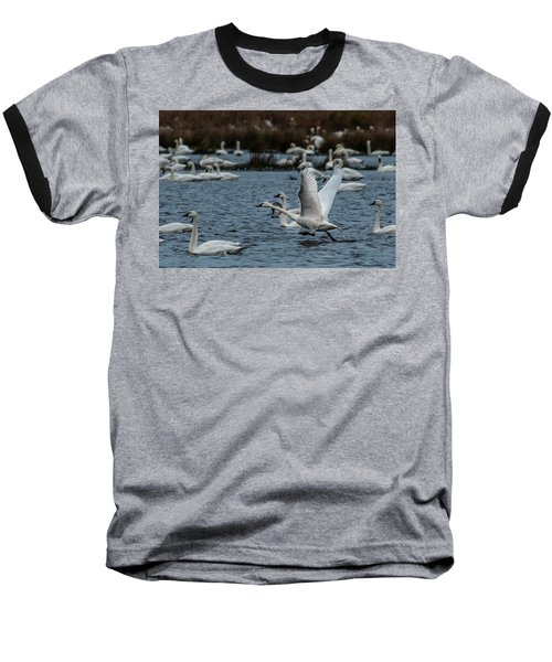 Tundra Swan And Liftoff Head Start Baseball T-Shirt