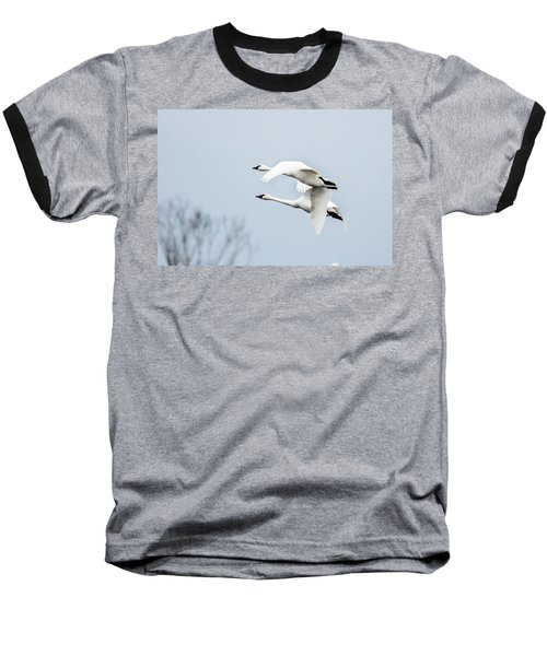 Tundra Swan Lift-off Baseball T-Shirt