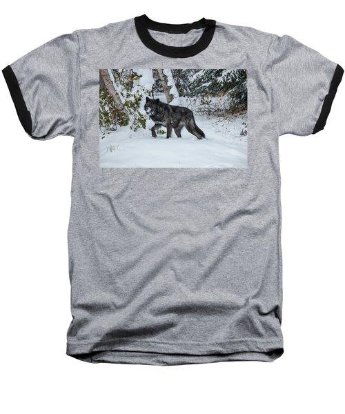 Tundra Wolf 6701 Baseball T-Shirt