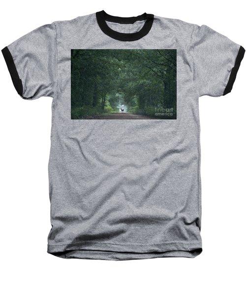 Tunnel Of Trees Baseball T-Shirt