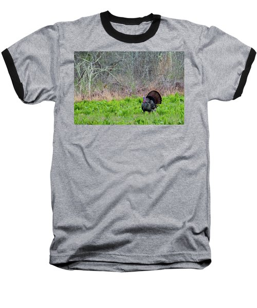 Baseball T-Shirt featuring the photograph Turkey And Cabbage by Bill Wakeley