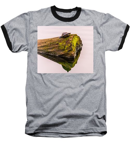 Turtle Basking Baseball T-Shirt by Jerry Cahill