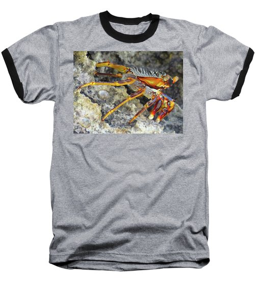 Turtle Bay Resort Watamu Kenya Rock Crab Baseball T-Shirt