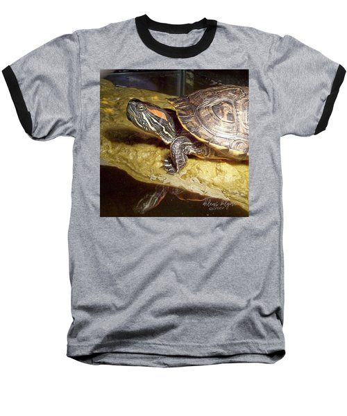 Turtle Reflections Baseball T-Shirt