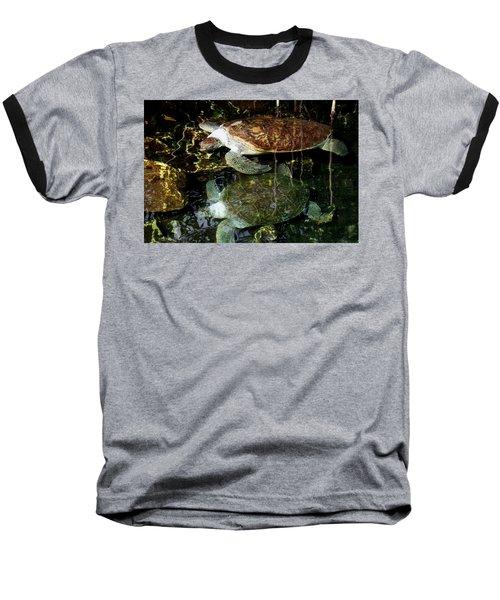 Turtles Baseball T-Shirt by Angela Murray
