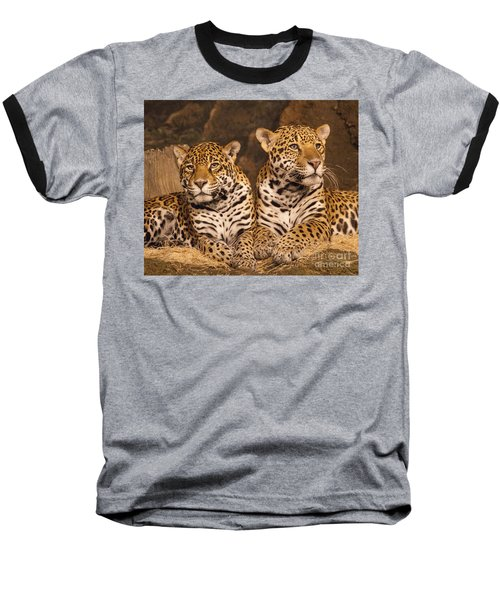 Twin Cheetahs Baseball T-Shirt